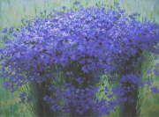 Cornflowers (private collection)